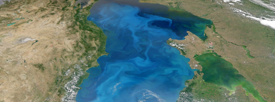 AQUA / MODIS image (500 m resolution, 15.07.2012), Black Sea (view from east to west), © 2012 NASA - Phytoplankton across the Black Sea. Some components of phytoplankton constantly remove CO2 from the atmosphere, send it down to the seafloor and help to stabilize the climate.